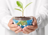 Earth in human the hand  — Stock Photo