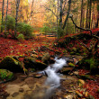 Stock Photo: Mountain autumn river