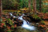 Autumn water scape — Stock Photo