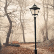 Street lamp in misty autumn forest park — Stock Photo