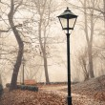 Street lamp in misty autumn forest park — Stock Photo