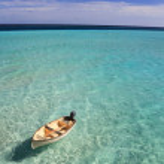 Постер, плакат: Boat drifting in the Maldives