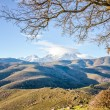 Monte Cinto from Col de San Colombano in Corsica — Stock Photo