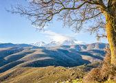 Monte Cinto from Col de San Colombano in Corsica — Stock Photo