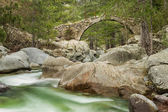 Genoese bridge over Tartagine river in northern Corsica — Stock Photo