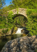 Genoese bridge and cascade near Feliceto in Corsica — Stock Photo