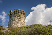 Genoese tower at Farinole on Cap Corse in Corsica — Stock Photo