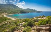 Baie de nichiareto en la costa oeste de Córcega — Foto de Stock