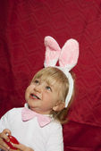Smiling little bunny — Stock Photo
