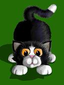 Hravé kotě — Stock fotografie