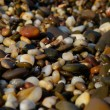 Pebble, stone, on, smooth, beach, outdoors, sea — Stock Photo #40476539