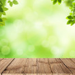 Fresh spring green bokeh background with wooden table for your products displays — Stock Photo #40212761