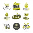 Olive oil icon set — Stock Vector #46261181