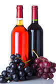 Bottles of wine and a grapes — Stock Photo