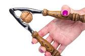 Hand opening a walnut with a nutcracker — Stock Photo