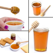 Collage of different compositions with honey — Stock Photo