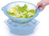 Washing of lettuce in a plastic bowl — Stock Photo