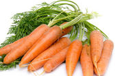 Bunch of fresh carrots with leaves — Stock Photo