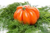 Beefsteak tomato on dill — Stock Photo