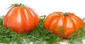 Beefsteak tomatoes on dill — Stock Photo