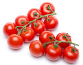 Cluster tomatoes — Stock Photo
