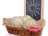Melons, fruits of the sun — Stock Photo
