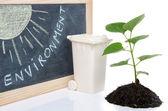 Concepto del ambiente con una pequeña planta verde, una lata de basura y th — Foto de Stock