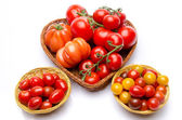 Composition of different varieties of tomatoes — Stock Photo