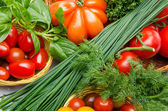 Composition of different varieties of tomatoes with herbs — Stock Photo