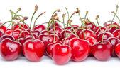 Kırmızı kiraz — Stok fotoğraf