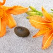 Pebble stone between two orange lily flowers on gray sand — Stock Photo