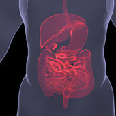 X-Ray picture of a person. Sore digestion — Stock Photo