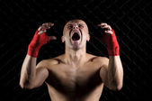 The fighter screaming — Stok fotoğraf