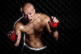 El luchador — Foto de Stock