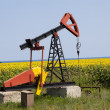 Oil pump with sunflowers field on the background — Stock Photo #40226515