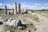 Stone Forest near Varna, Bulgaria, Pobiti kamani, rock phenomenon — Stock Photo
