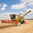 Combine working on a wheat field — Stock Photo #42107737