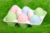 Pastel colored easter eggs in cardboard — Stock Photo