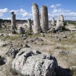 Stone Forest near Varna, Bulgaria, Pobiti kamani, rock phenomenon — Stock Photo #43046281
