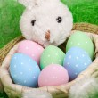 Easter basket with decorated eggs and the Easter bunny — Stock Photo #43048981