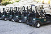 Golf Carts — Photo