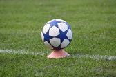 Soccer ball on green field  — Stockfoto
