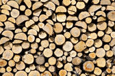 Stack of dried firewood of birch wood — Stock Photo