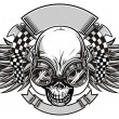 Stock Vector: Racing skull