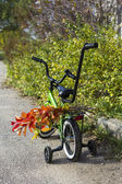 Children's bicycle with a bouquet — Stock Photo