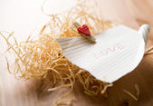 Love word on piece of paper — Stock Photo