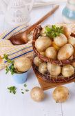 Fresh organic potatoes in a vintage rustic basket — Stock Photo