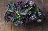 Bunch of kale on a rustic wooden background — Stock Photo
