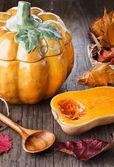 Autumn(Fall) Zátiší s dýně a tykve hrnec — Stock fotografie