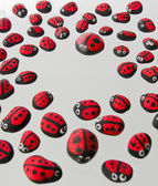 Ladybird form in heart shape — Stock Photo